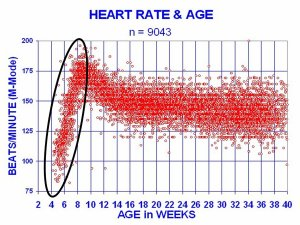 29-8_HeartRate[1]